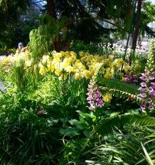 Lord among the daffodils
