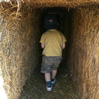 A General in a haystack