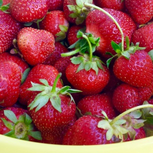 The Lord and the General''s hoard of strawbs