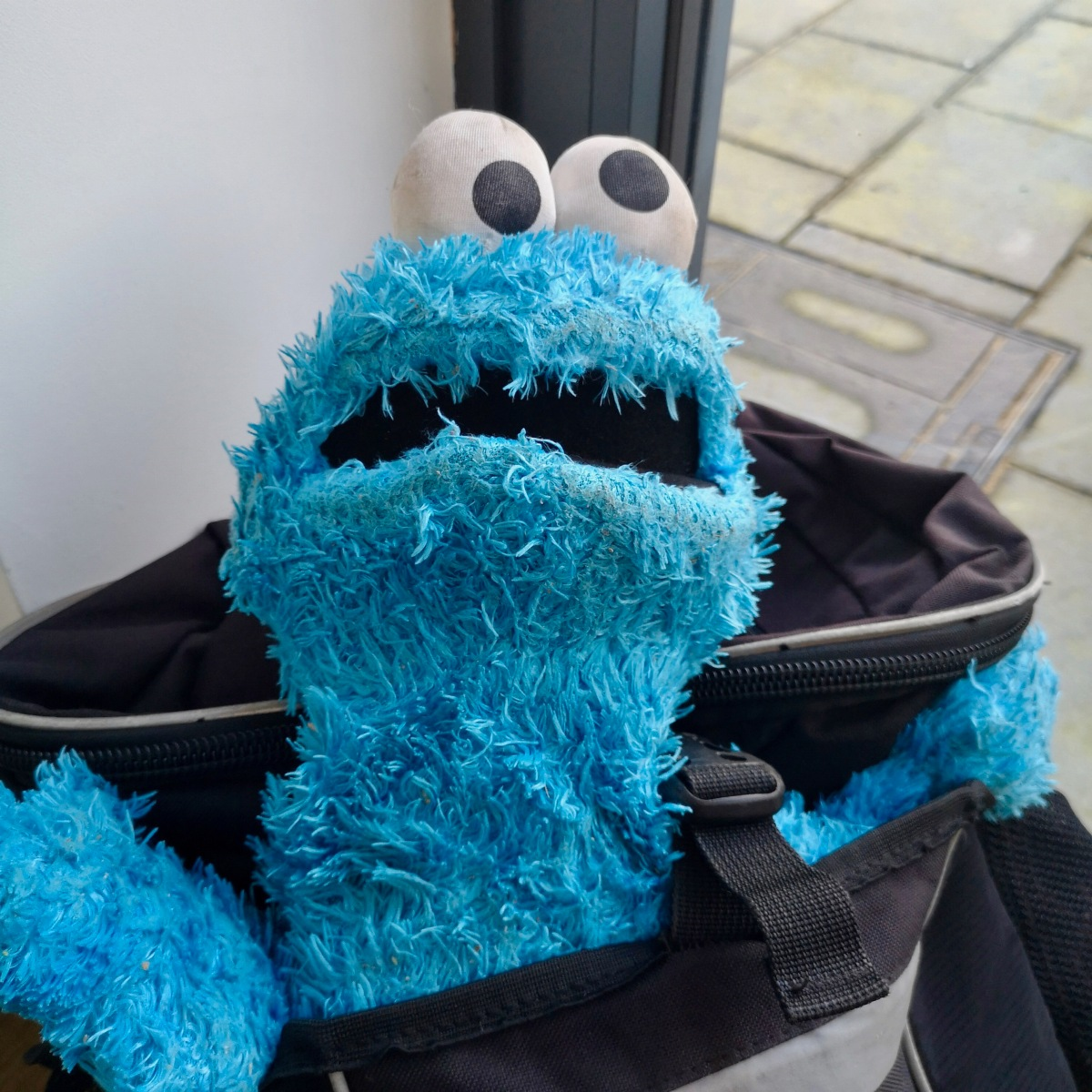 Infested Cookie Monster